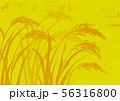 稲 水彩画 56316800