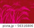 稲 水彩画 56316806