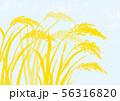 稲 水彩画 56316820