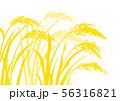 稲 水彩画 56316821
