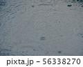 豪雨中 56338270
