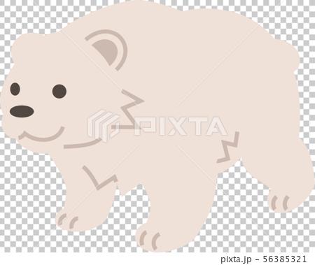 Polar bear 56385321