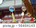 浅草ホオズキ市 56404143