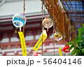 浅草ホオズキ市 56404146