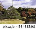 (東京都)小石川後楽園 紅葉 56438398