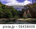 (東京都)小石川後楽園 紅葉 56438406