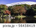 (東京都)小石川後楽園 紅葉 56438419