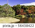 (東京都)小石川後楽園 紅葉 56438422