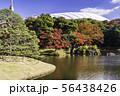 (東京都)小石川後楽園 紅葉 56438426