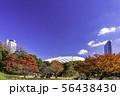 (東京都)小石川後楽園 紅葉 56438430