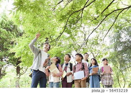 課外学習中の小学生と先生 56453219