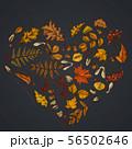 Heart design on dark background with rowan, rowan, acorn, buckeye, fern, maple, birch, maple leaves 56502646