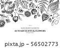 Design with black and white rowan, rowan, acorn, buckeye, fern, maple, birch, maple leaves, lagurus 56502773