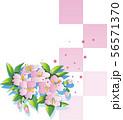 桜と格子の背景 56571370