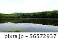 知床五湖の五湖 56572937