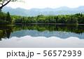 知床五湖の二湖 56572939