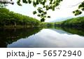 知床五湖の四湖 56572940