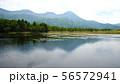 知床五湖の二湖 56572941