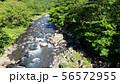 知床の赤イ川の空撮 56572955