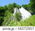 オシンコシンの滝 56572957