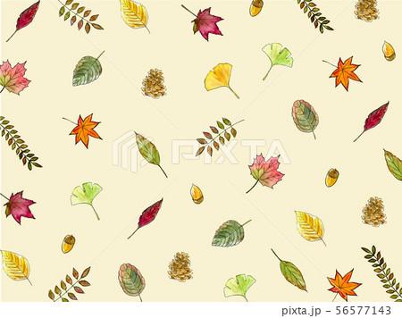 秋の葉の背景 壁紙 56577143