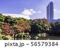 (東京都)小石川後楽園 紅葉 56579384