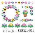 パンジー 素材 56581451