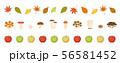秋のライン素材 56581452