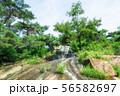 achasan waterfall in summer 56582697