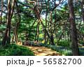achasan ecological park 56582700