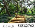 achasan ecological park 56582702