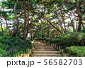 achasan ecological park 56582703