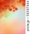 背景-和-和風-和柄-和紙-紅葉-秋-グラデーション 56587444