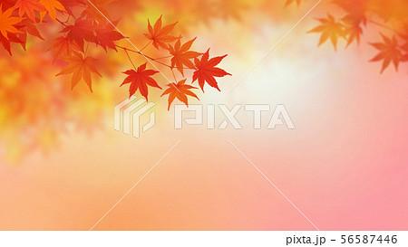 背景-和-和風-和柄-和紙-紅葉-秋-グラデーション 56587446