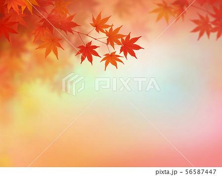 背景-和-和風-和柄-和紙-紅葉-秋-グラデーション 56587447