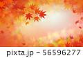 背景-和-和風-和柄-和紙-紅葉-秋 56596277