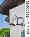 【バスケット ゴール】 56600343
