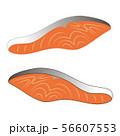 鮭の切り身 ベクター イラスト 56607553