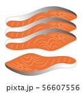 鮭の切り身 ベクター イラスト 56607556