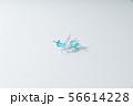 画鋲 画びょう ピン 針 THUMBTACK  押しピン 文房具 56614228