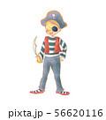 海賊の衣装 56620116