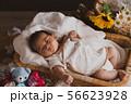 出産 赤ちゃん 56623928