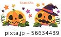 カボチャ1(テクスチャ) 56634439