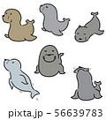 vector set of sea lion 56639783