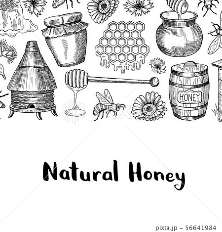 Vector background with sketched honey elements 56641984