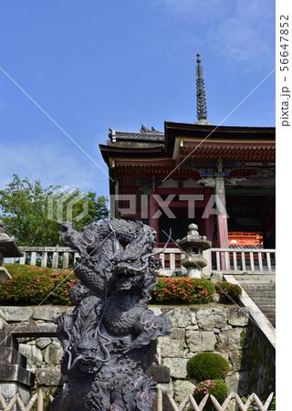 清水寺 浮雲青龍の像 56647852