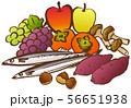 秋の味覚 イラスト 56651938