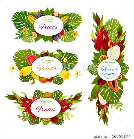 Exotic fruits figs, papaya, durian and dragonfruit 56659874
