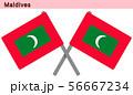 交差したモルディブの国旗 56667234