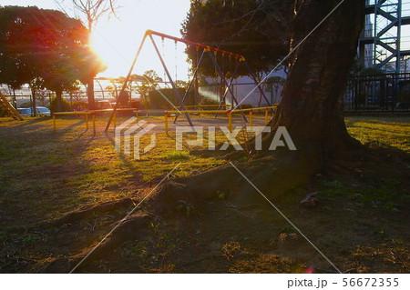 公園のブランコ 56672355